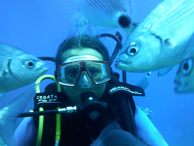 Centre de Plongée Cap d'Agde Méditerranée : Centre de Plongée Abyss plongée